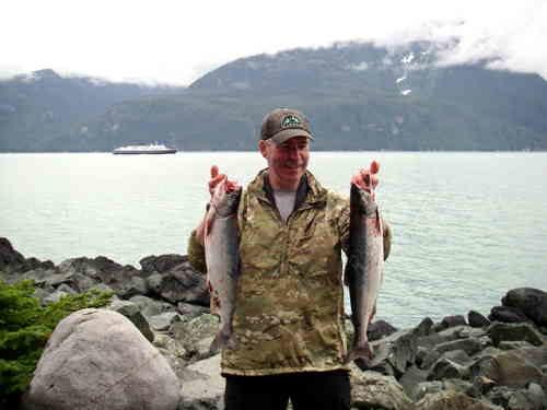 Pair of pink salmon