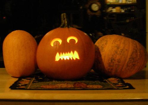 homestead pumpkins 2011