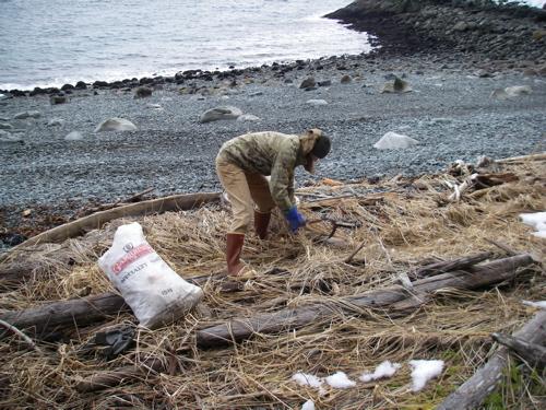 harvesting biofilter