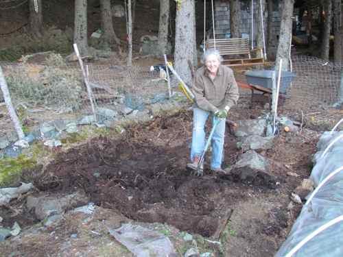 Michelle preparing ground for new raised garden beds (Photo: Mark A. Zeiger).