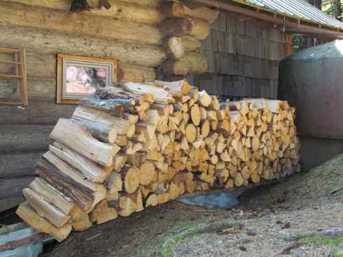 What's left of the previous winter's wood (Photo: Mark A. Zeiger).