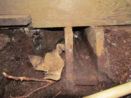 The valve box with exposed water line on the left side (Photo: Mark A. Zeiger).