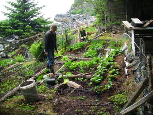 The garden in 2007 (Photo: Mark A. Zeiger).