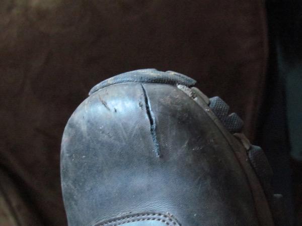 ax-cut boot